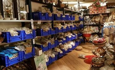 Rotterdam – Recordvangst politie en douane in onderzoek naar wildlife crime