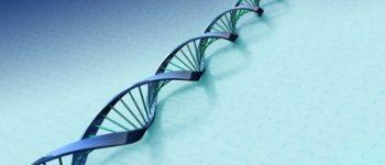 Enschede – Straatrover aangehouden na DNA match