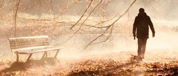 Morgenochtend code oranje vanwege westerstorm & Sneeuw :  KLM schrapt vluchten