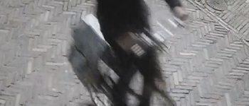 Leeuwarden – Gezocht – Belangrijke getuigen gezocht na dodelijk steekincident