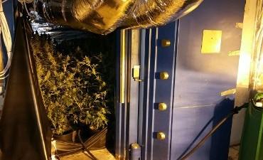 Vuren – Politie treft hennepkwekerij aan in oude kluis