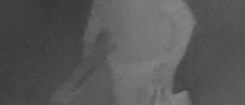 Almelo – Gezocht – Diefstal bliksemafleider