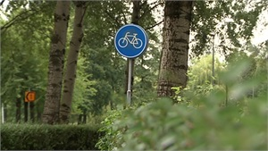 Almere-Haven – Gezocht – Poging tot diefstal met geweld op straat