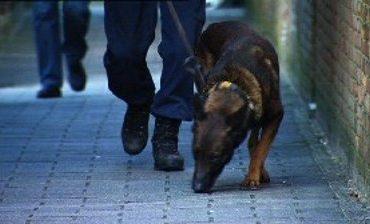 Ulvenhout – Politie onderzoekt vondst van menselijk resten in bosperceel