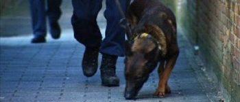 Almere – Verdachten aangehouden na woninginbraak