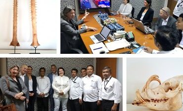 Rotterdam – Team Milieu schudt stoffig imago met internationaal succes van zich af