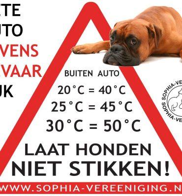 Waarschuwing : Laat nooit een hond achter in de auto bij warm weer