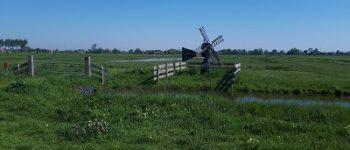 Warder – Dode vogeltjes aangetroffen: getuigen gezocht!