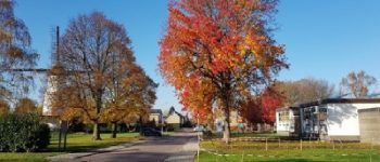 Rilland – Politie onderzoekt verkeersveiligheid Witte Molenwijk