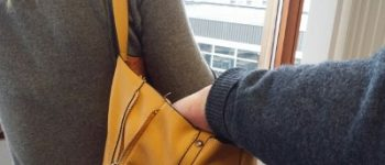 Bollenstreek – Zakkenrolster aangehouden na onderzoek