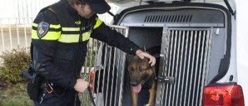 Hilversum – Politiehond grijpt vluchtende autokraker