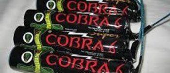 Amersfoort – Cobra's in beslag genomen en verdachten aangehouden