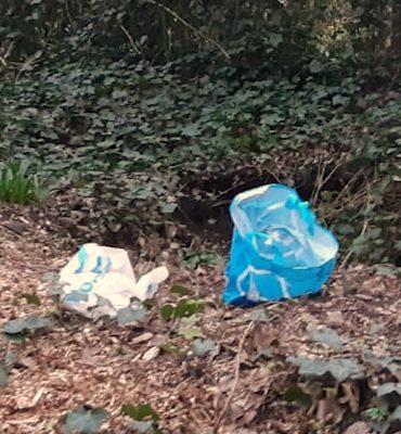 Leidschendam – Gezocht – Dode puppy's aangetroffen in Leidschendam