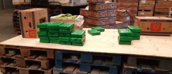 Hoogerheide – Vier aanhoudingen na vondst 72 kilo cocaïne