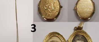 Zwartewaterland – Gezocht – Verdachten aangehouden, gestolen sieraden gevonden