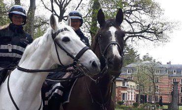 Woensdrecht – Nederlandse en Belgische politie controleren grensgebied